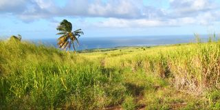 Saint Kitts Landscape Royalty Free Stock Photos