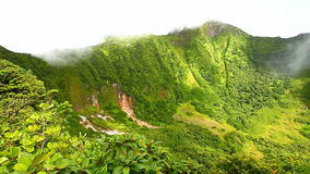 Saint Kitts Rainforest Crater stock footage