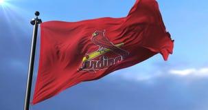 Saint Louis Cardinals flag, american professional baseball team, waving - loop. Flag of the team of Saint Louis Cardinals, american professional baseball team stock footage