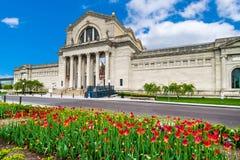 Saint Louis muzeum sztuki Zdjęcia Stock