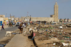 Saint Louis Senegal, Afrika Royaltyfri Bild