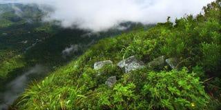 Saint Lucia do pequeno Piton Imagens de Stock