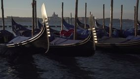 Venice gondolas and boat traffic with the island of Giudeca in the background stock video footage