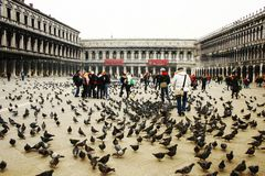 Saint Marks Square Venice Royalty Free Stock Photos