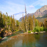 Saint Mary Creek - Glacier NP Royalty Free Stock Images