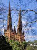 Saint Mary's Cathedral through the trees Stock Photography