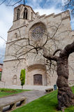 Saint Michel cathedral  and tree at Carcassonne Stock Image