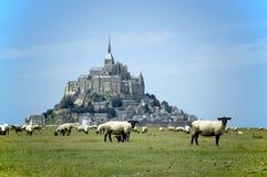 Saint Michel di Mont con gli agnelli Fotografie Stock Libere da Diritti