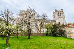 Saint Omer Cathedral, France Royalty Free Stock Image
