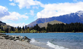 Saint Omer park in Queenstown Royalty Free Stock Image
