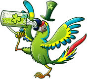 Saint Paddys Day Macaw Drinking Beer stock photo