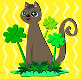 Saint Patrick Cat with Clovers Royalty Free Stock Photo