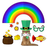 Saint patrick cat Stock Images
