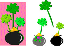 Saint Patrick Clovers in a Pot of Gold Stock Photography