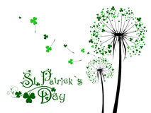 Saint Patrick Day Dandelions Royalty Free Stock Photos
