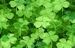 Saint Patrick Green Clover Background stock photography