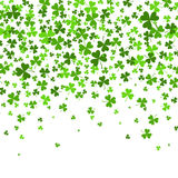 Saint Patrick s Day Border with Green Four and Tree Leaf Clovers on White Background. Vector illustration. Template Royalty Free Stock Image