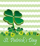 Saint Patrick's Day greeting royalty free stock photo