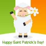 Saint Patrick s Day Sheep & Irish Flag Stock Photos