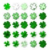 Saint Patrick's shamrock Royalty Free Stock Image