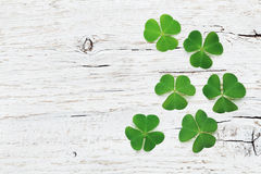Saint Patricks Day background with green shamrock on white wooden texture top view. royalty free stock photo