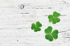 Saint Patricks Day background with green shamrock on wooden texture top view. stock photography