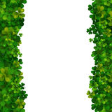 Saint Patricks Day background, realistic shamrock leaves Stock Image