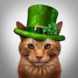 Saint Patricks Day Cat. Concept as a fun happy smiling feline pet wearing a leprechuan green hat with shamrock four leaf clover decoration as a march 17 holiday Stock Photography