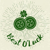 Saint Patricks Day design elements Royalty Free Stock Photos