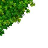 Saint Patricks Day vector background, shamrock leaves Royalty Free Stock Image