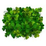 Saint Patricks Day vector background, shamrock leaves Stock Image