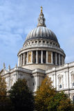Saint Paul's cathedral in London Royalty Free Stock Images