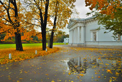 Saint-Petersburg. Autumn on Elagin island Stock Image