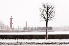 Saint Petersburg landmark Spit of Vasilievsky Island Royalty Free Stock Image