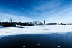 Saint Petersburg Landscape Royalty Free Stock Photo
