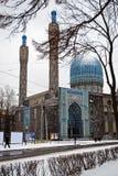 Saint-Petersburg Mosque view Stock Image