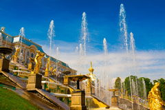 saint petersburg Peterhof fontanny i statuy Zdjęcie Stock