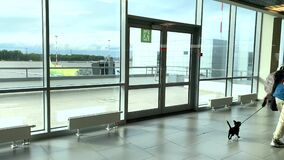 A girl with a dog and other passengers walk down the corridor at Pulkovo airport.