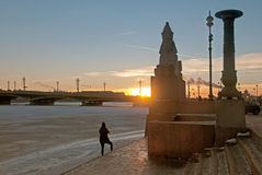Saint-Petersburg. Russia. Evening view of the city. With Egyptian ancient sphinx on The Universitetskaya Embankment of The Neva River. On the background is The Stock Photography