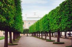 Beautiful park of rest in Peterhof in St. Petersburg stock photos