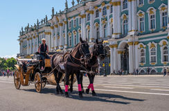 Saint Petersburg, Russia - June 17, 2017: Horse carriage carries tourists on the Palace square along the Hermitage. Royalty Free Stock Photos