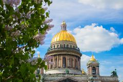 Saint Isaac`s Cathedral in the flowers of lilac and Apple trees. SAINT-PETERSBURG, RUSSIA - MAY 22, 2018: Saint Isaac`s Cathedral Isaakievskiy Sobor in the Royalty Free Stock Photography