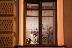 A view through the old shabby window to the apartment with a rich fretwork on the ceiling. In the Saint Petersburg, Russia Stock Photos