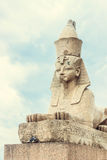 Saint-petersburg sphinx near the Neva river Royalty Free Stock Images