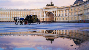 Saint-Petersburg. Summer 2016. Carriage horses at the Palace square. Royalty Free Stock Image