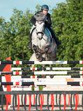 SAINT PETERSBURGO 5 DE JULHO: Rider Maria Khimchenko em Calina no th Imagem de Stock Royalty Free