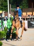 SAINT PETERSBURGO 5 DE JULHO: Rider Valeriya Sokolova em Sir Stanwel Imagens de Stock