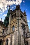 Saint Pierre de la catedral en Ginebra Foto de archivo libre de regalías
