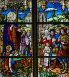 Saint Rumbold - Stained Glass in Mechelen Cathedral Royalty Free Stock Photography
