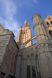 The Saint Salvador Cathedral in Bruges Stock Images